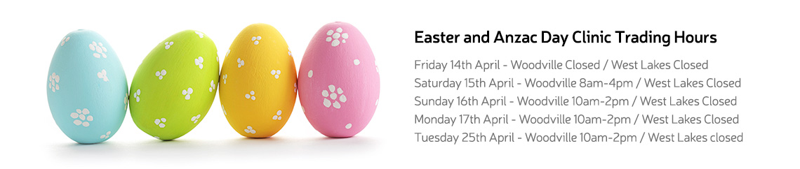 pet doctor vet easter hours