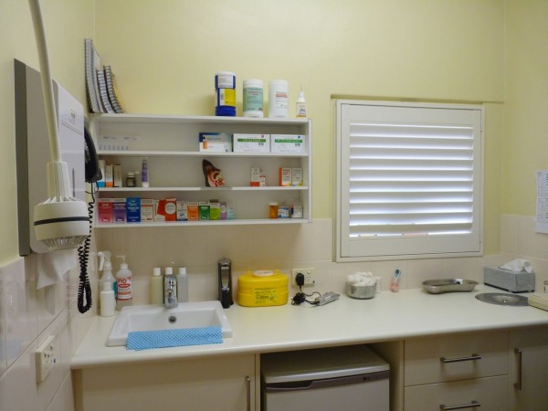 Pet Doctor Consulting Room