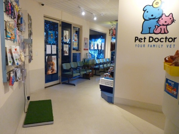 Pet Doctor Waiting Area