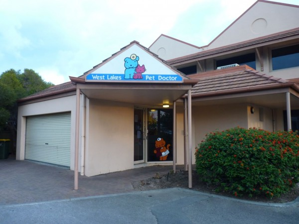Pet Doctor Brebner Drive Clinic in Adelaide
